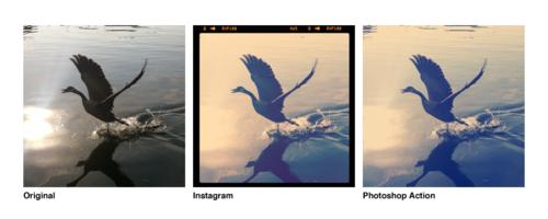 instagram-action