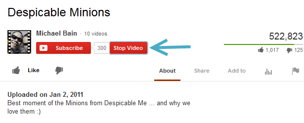 stop-youtube-video